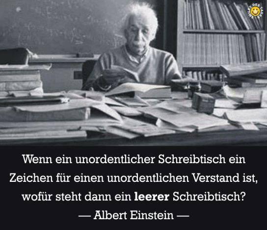 Einstein - Verstand