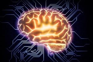 Dateipfade im Gehirn maxresdefault