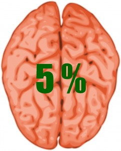 brain 5-145434_1280 Kopie