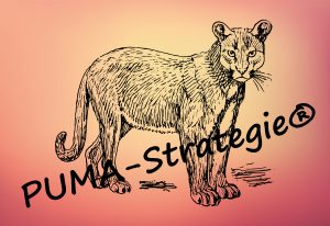 PUMA-Strategie